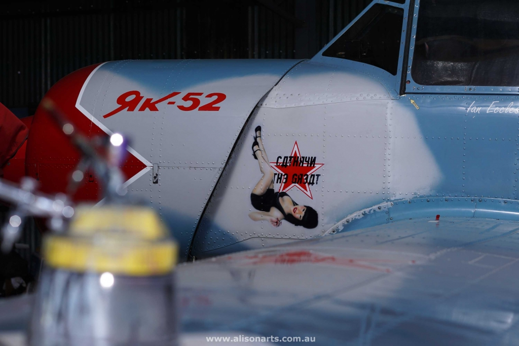 Custom airbrushed Yak-52 plane