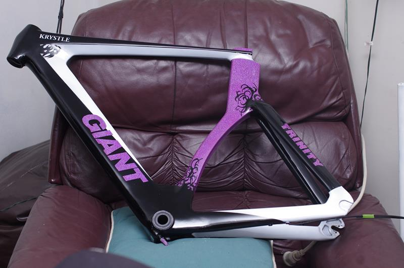 Custom painted, airbrushed Giant Trinity road bicycle
