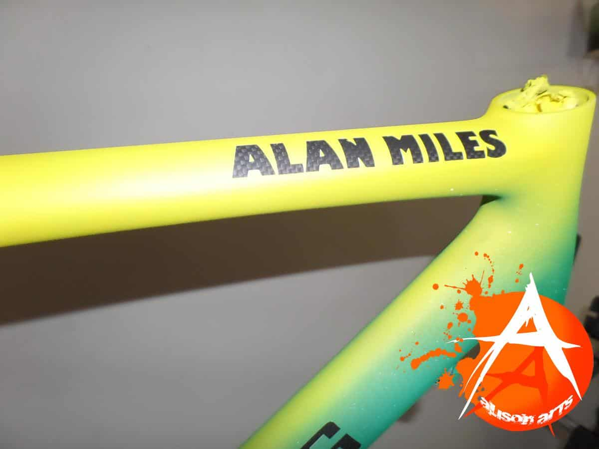 custom painted bicycle frame