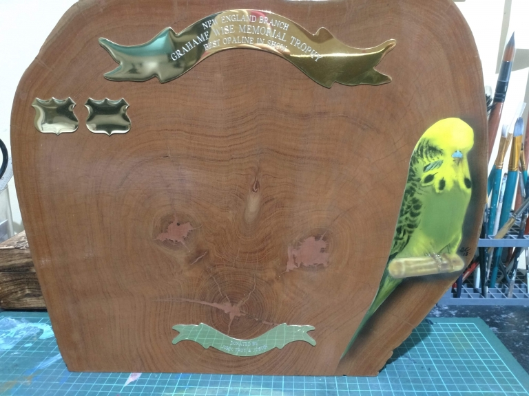 Airbrushed Budgerigar Trophy
